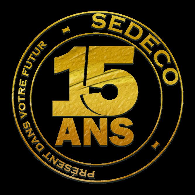 Logo 15 ans