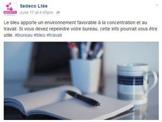 SEDECO : astuces et actualités business à découvrir sur Facebook